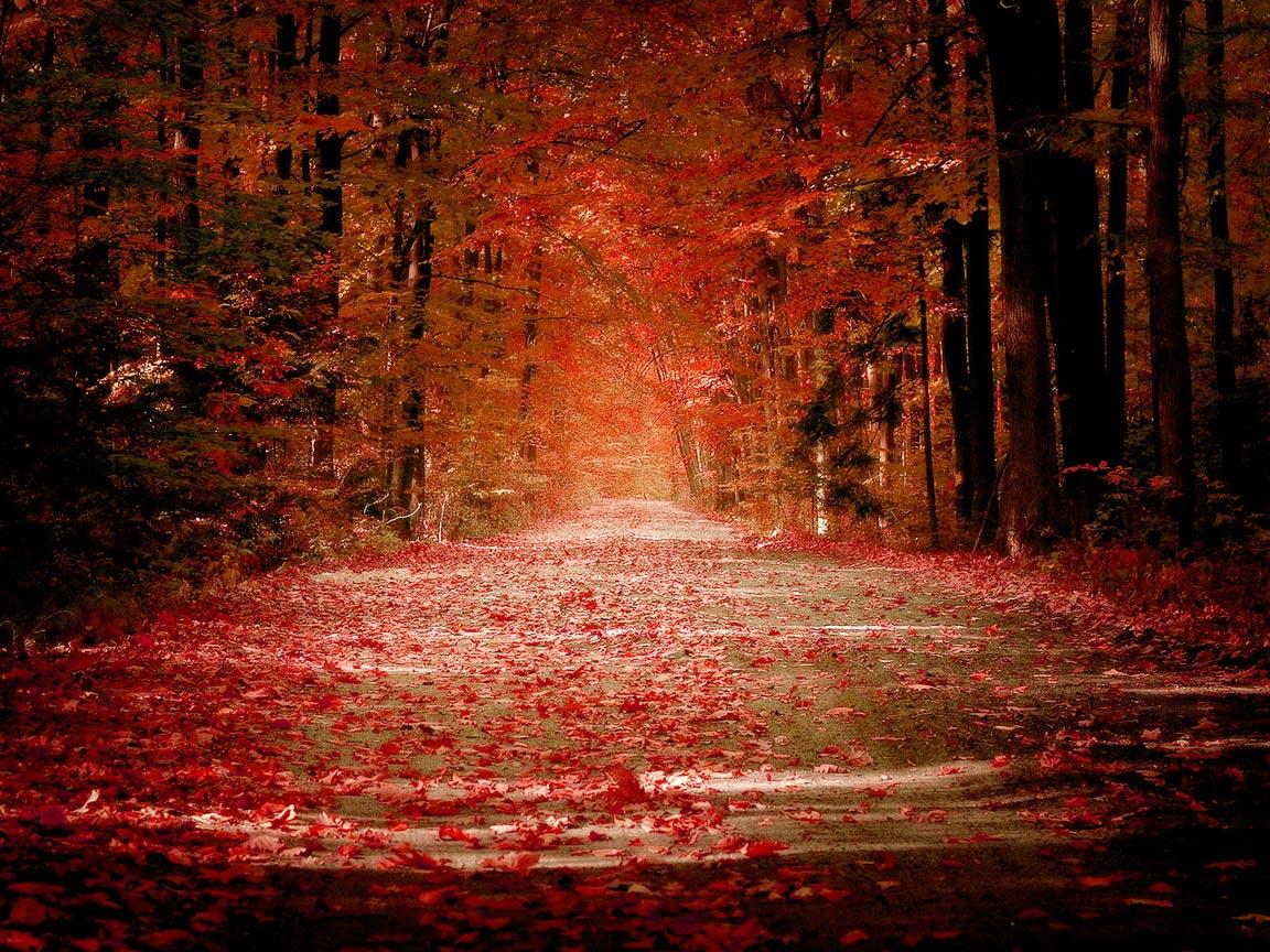 description of autumn