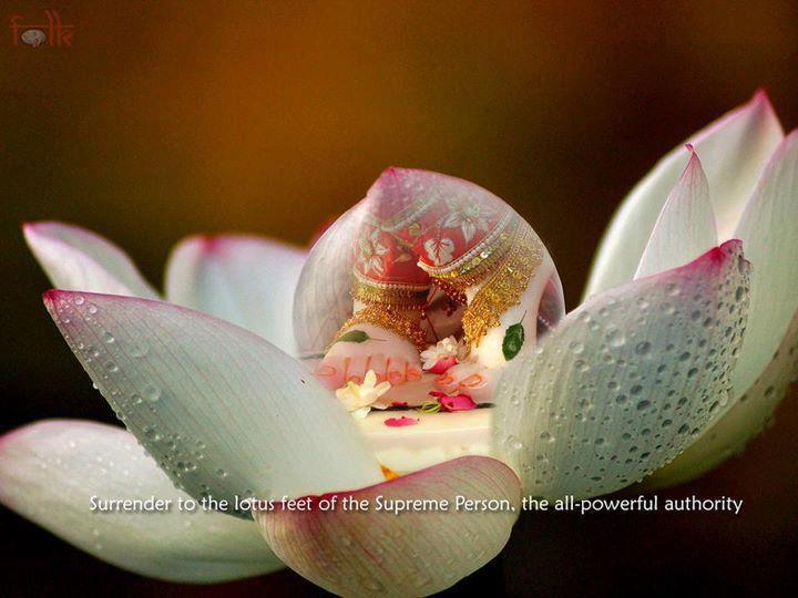 Lotus Feet The Hare Krishna Movement