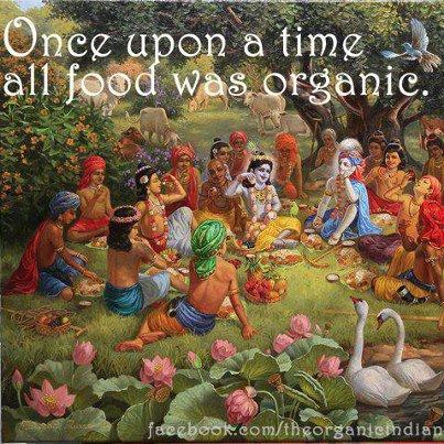 Origanic Food