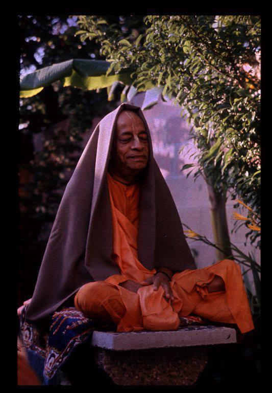 Srila Prabhupada in Rose Garden