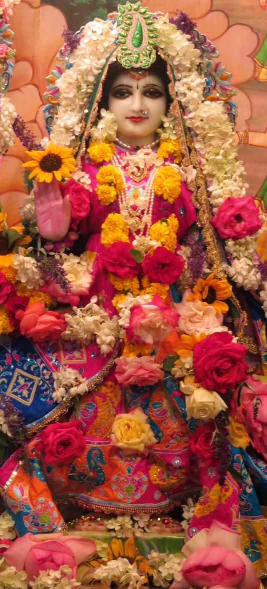 Srimati Radharani on Radhastmi