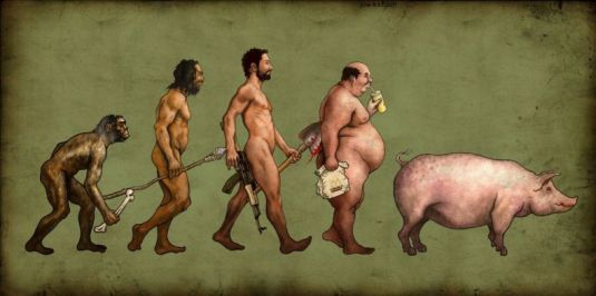The evolutionary process