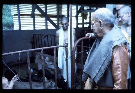 Srila Prabhupada's last visit to the Barn  at New Vrindavan 1976