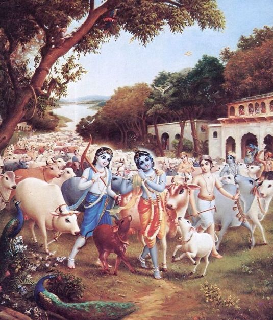 Krsna Balaram and the cowherd boys