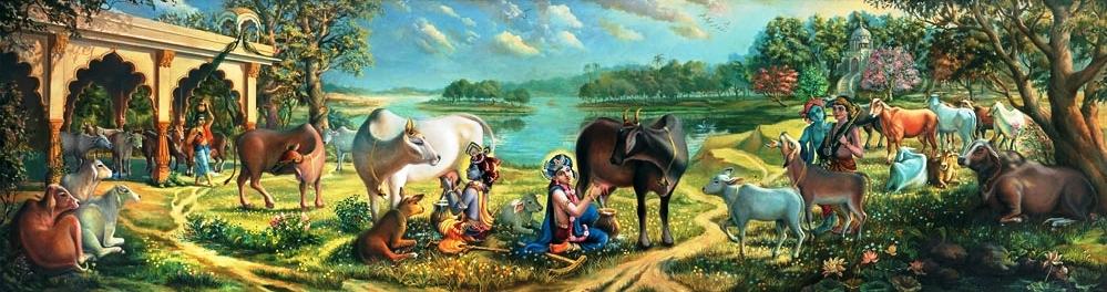 Krishna and Balaram with cows in Vrndavan