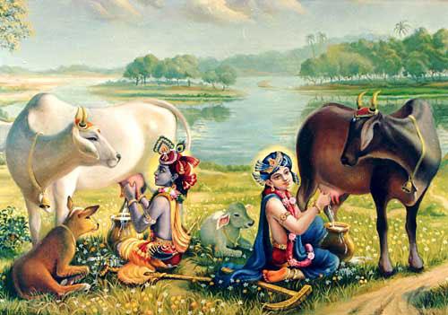 Krsna and Balarama with Cows
