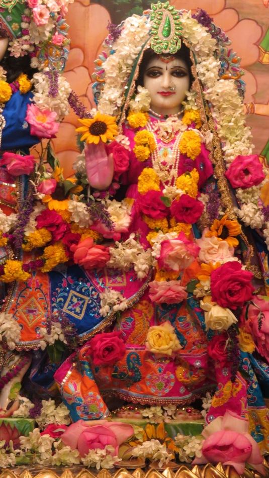 Sri Sri Radha Vrndaban Chandrs 2014-Radhastmi